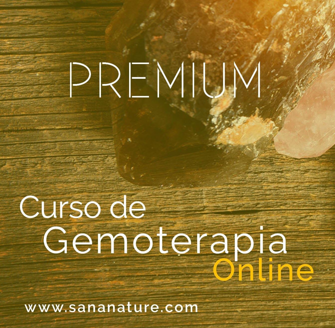 Curso de Gemoterapia Online Premium