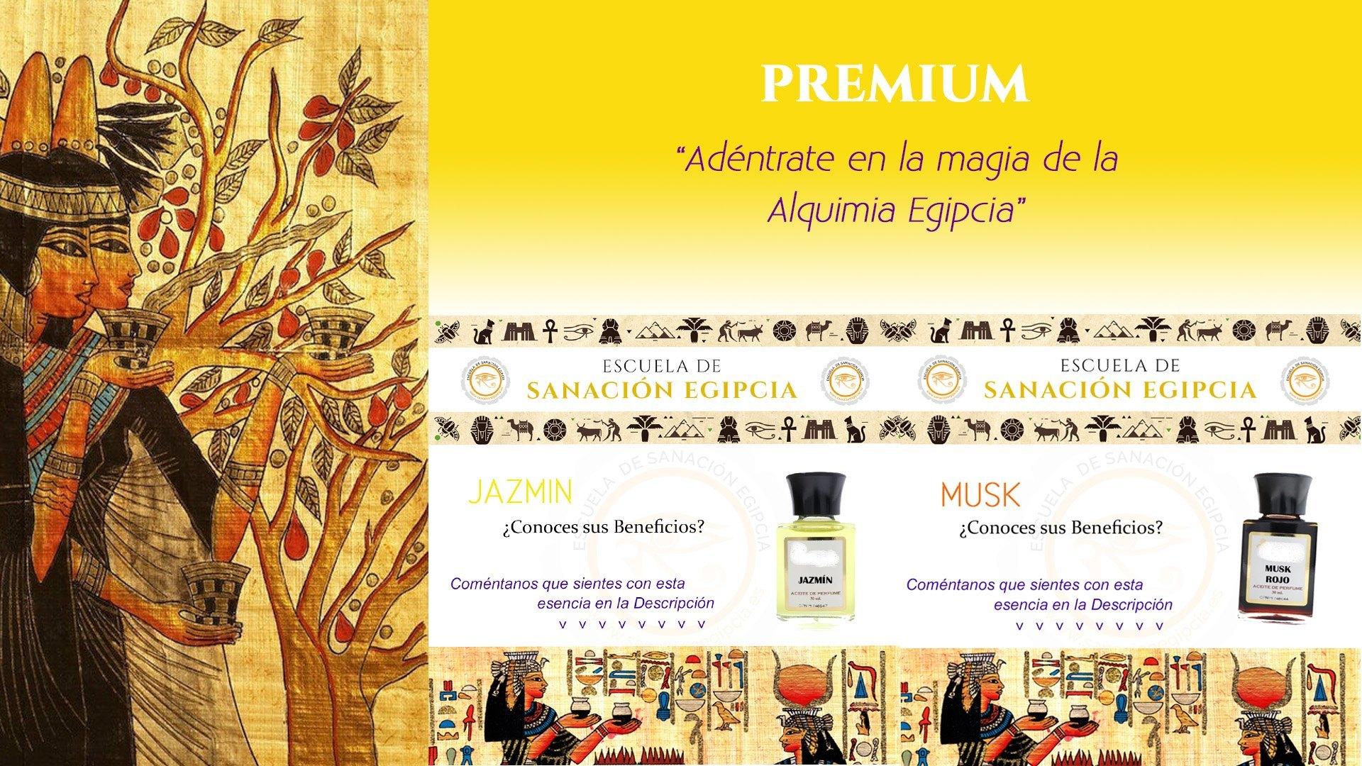 Curso de Aromaterapia Egipcia Online Premium
