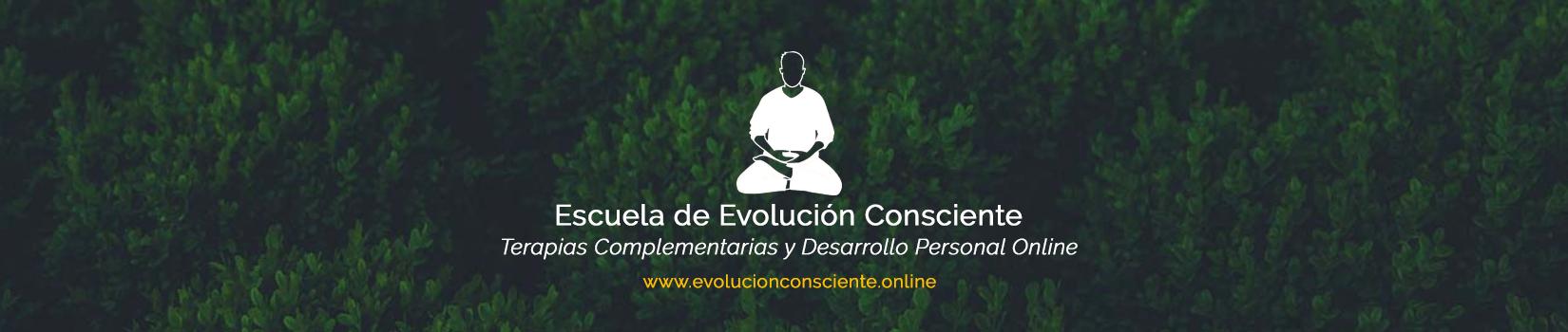 Escuela de Evolución Consciente Online